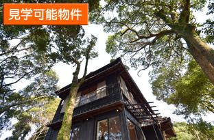 早苗町オープンハウスを開催します。
