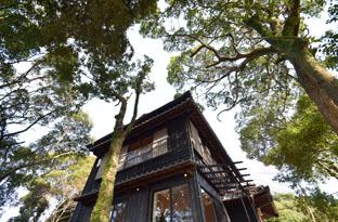 森の中のリノベーションハウス